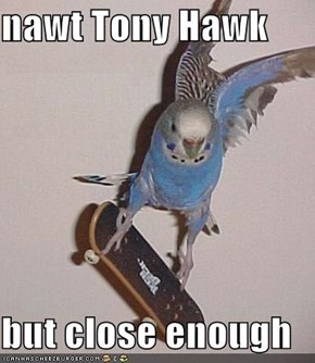 nawt Tony Hawk  but close enough