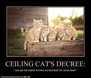 CEILING CAT'S DECREE: