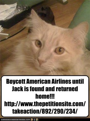 Boycott American Airlines until Jack is found and returned home!!! http://www.thepetitionsite.com/takeaction/892/290/234/