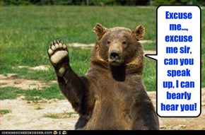 Excuse me..., excuse me sir, can you speak up, I can bearly hear you!