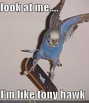 look at me....  I'm like tony hawk