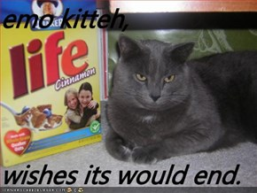 emo kitteh,  wishes its would end.