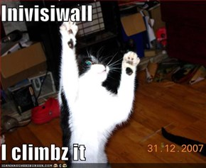 Inivisiwall  I climbz it