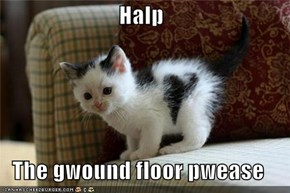 Halp  The gwound floor pwease