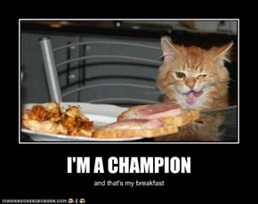 I'M A CHAMPION