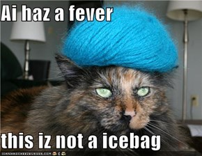 Ai haz a fever  this iz not a icebag