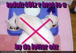 todaiz LOLz r brot to u  by da lettur ekz