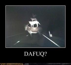 DAFUQ?
