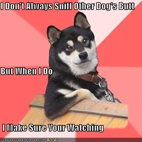 I Don't Always Sniff Other Dog's Butt But When I Do  I Make Sure Your Watching