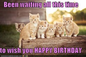 Been waiting all this time  to wish you HAPPY BIRTHDAY