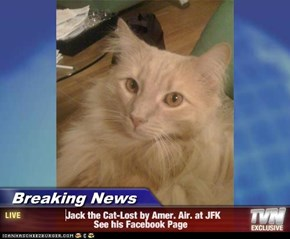 Breaking News -                 Jack the Cat-Lost by Amer. Air. at JFK                           See his Facebook Page