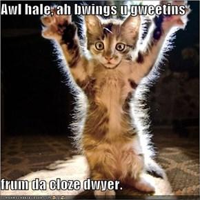 Awl hale, ah bwings u gweetins  frum da cloze dwyer.