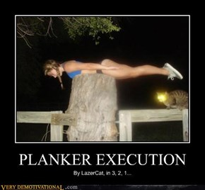 PLANKER EXECUTION