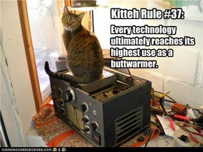 Every technology ultimately reaches its highest use as a buttwarmer.