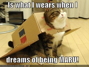 Is what I wears when I  dreams of being MARU!