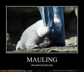 MAULING