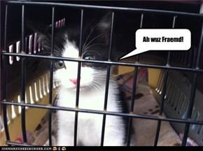 Ah wuz Fraemd!