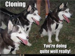 Cloning...