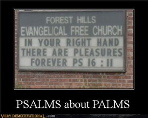 PSALMS ABOUT PALMS