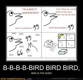 B-B-B-B-BIRD BIRD BIRD,