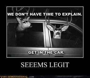 SEEEMS LEGIT