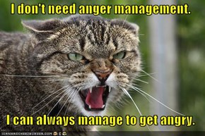 I don't need anger management.    I can always manage to get angry.