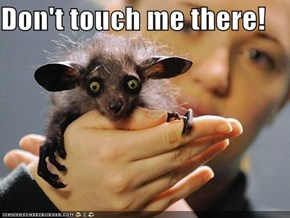 Don't touch me there!
