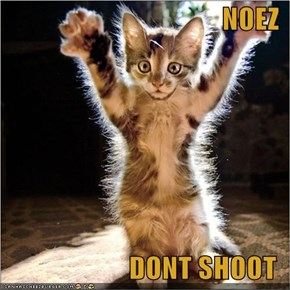 NOEZ  DONT SHOOT