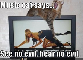 Music cat says...  See no evil. hear no evil.