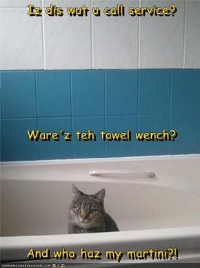 Iz dis wut u call service?   Ware'z teh towel wench?   And who haz my martini?!