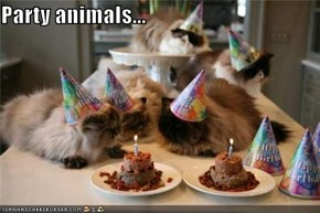 Party animals...