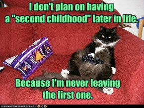 "I don't plan on having a ""second childhood"" later in life."
