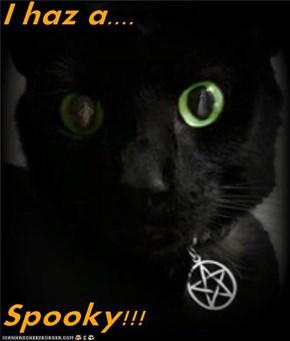 I haz a....  Spooky!!!