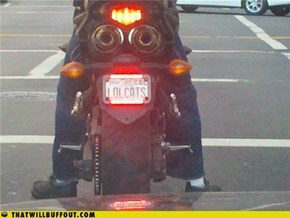 License LOLs: Official Company Motorcycle