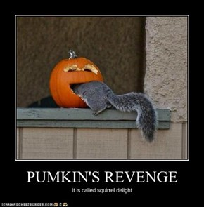 PUMKIN'S REVENGE