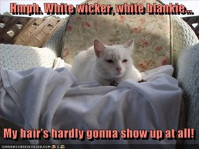 Hmph. White wicker, white blankie...     My hair's hardly gonna show up at all!