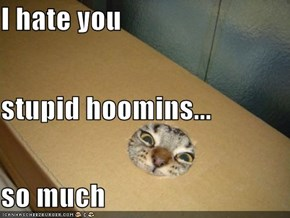 I hate you stupid hoomins... so much