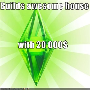 Builds awesome house           with 20 000$