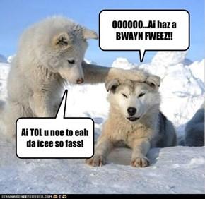 OOOOOO...Ai haz a BWAYN FWEEZ!!