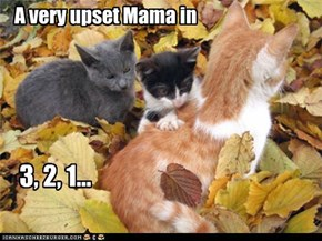 A very upset Mama in