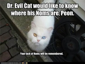 Evil Cat wants his Noms.