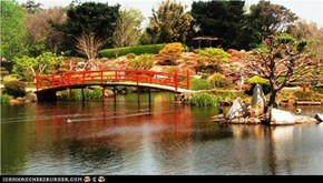 Japanese Gardens - Toowoomba, Australia