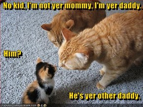 No kid, I'm not yer mommy, I'm yer daddy.   Him?                                               He's yer other daddy.