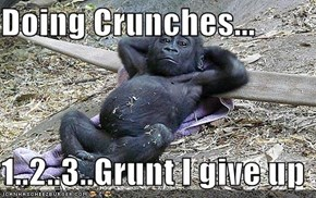 Doing Crunches...  1..2..3..Grunt I give up