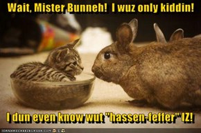 "Wait, Mister Bunneh!  I wuz only kiddin!     I dun even know wut ""hassen-feffer"" IZ!"