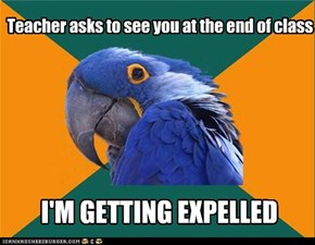 Paranoid Parrot: Class Dismissed...FOREVER!