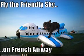 Fly the Friendly Sky..  ..on French Airway