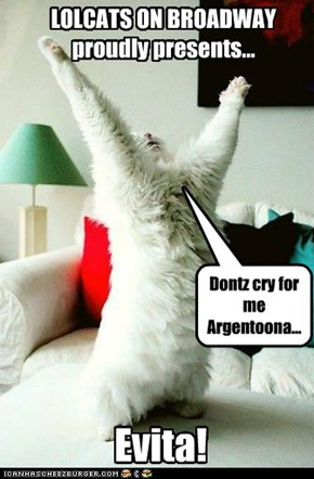 LOLCATS ON BROADWAYproudly presents...