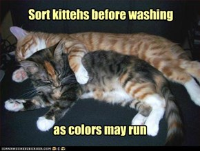 Sort kittehs before washing