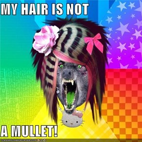 MY HAIR IS NOT  A MULLET!